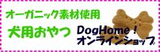 b0038381_1448186.jpg