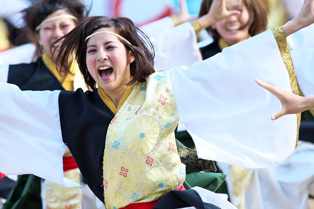 kagura@第16回にっぽんど真ん中祭り:Part2_c0187584_21211942.jpg