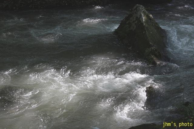 水という命、樹という命、光という命_a0158797_23442655.jpg