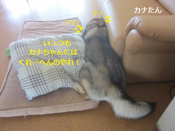 f0143123_14334465.jpg
