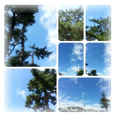 千葉県に行っていました♪_d0219834_1810498.jpg