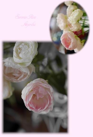 アサガオ&バラ_f0292335_2014192.jpg