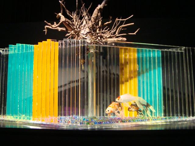 「アートアクアリウム 2014 江戸金魚の涼」へ行く。_f0232060_16273197.jpg