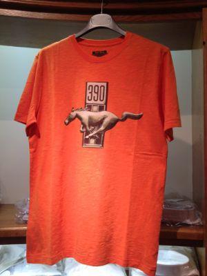 Tシャツ_b0273362_16152633.jpg