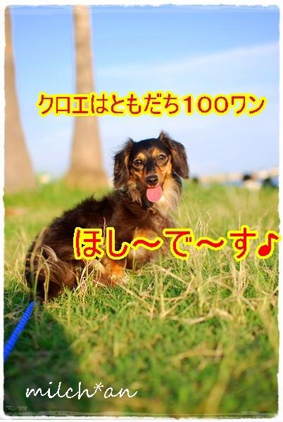b0115642_2233269.jpg