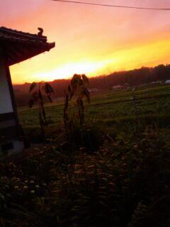 そろそろ稲刈り 始まりますよ~_f0071456_22493947.jpg