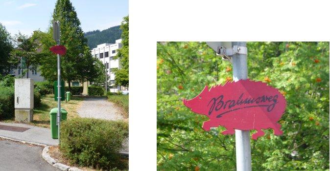 オーストリア編(9):ブラームス博物館(13.8)_c0051620_6345271.jpg