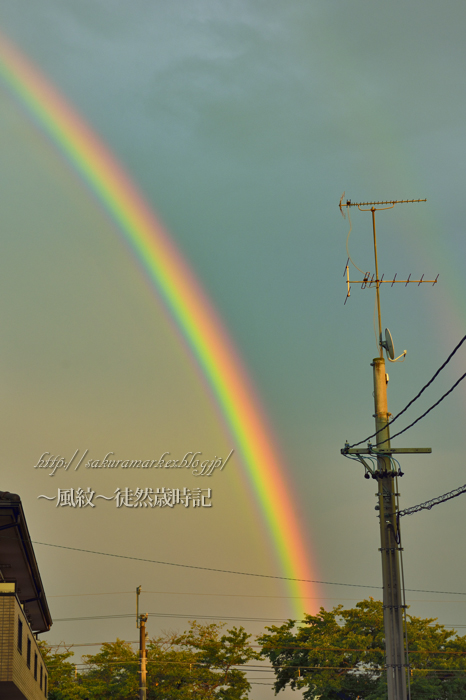 夕空に現れた虹・・・。_f0235723_19453396.jpg