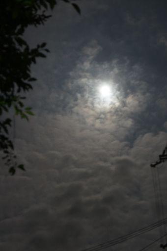 最高のお月見日和でしたが、_f0155431_22163196.jpg