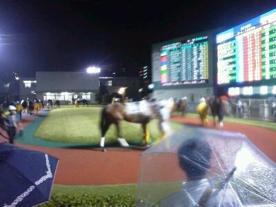 川崎競馬場第9Rで勝負_d0057733_2074976.jpg