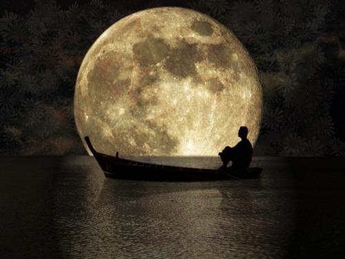 今夜は中秋の名月!そして明日は今年最後のスーパームーン♪_e0251361_15003358.jpg