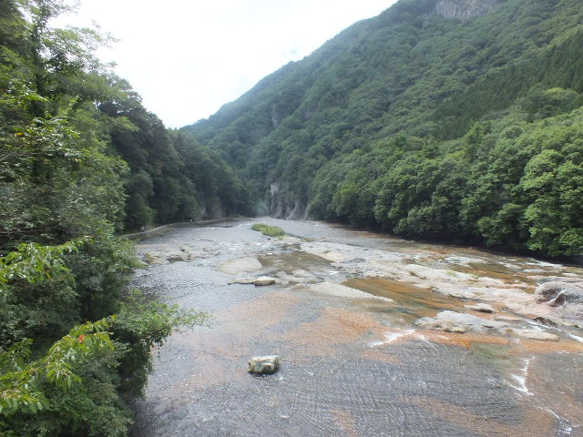 9月5日 吹割の滝付近の植物観察_e0145782_12745100.jpg