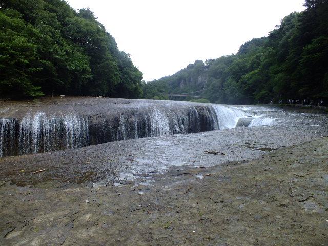 9月5日 吹割の滝付近の植物観察_e0145782_127967.jpg