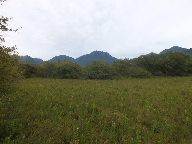 9月5日 戦場ケ原の植物観察_e0145782_1449086.jpg