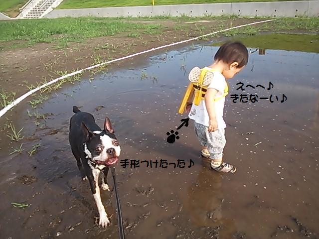 ★水とあれば濡らされるボク★_d0187891_18364643.jpg