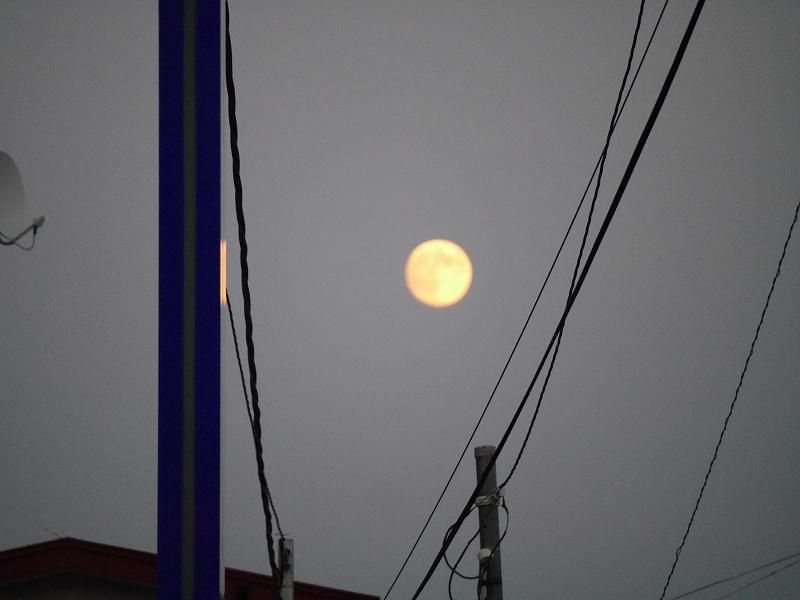 中秋の名月、そしてひやおろし、秋だね!!_f0329091_230090.jpg