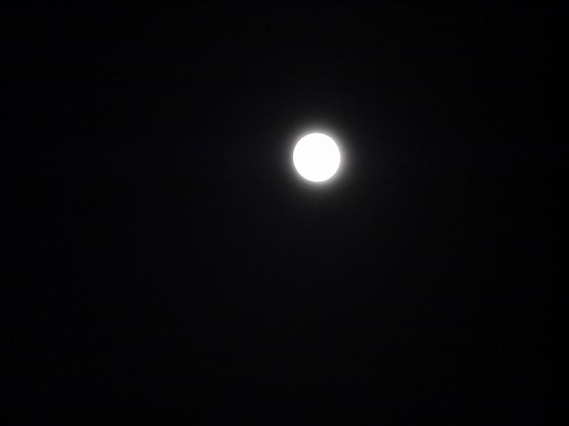中秋の名月、そしてひやおろし、秋だね!!_f0329091_23103450.jpg