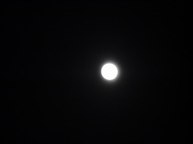 中秋の名月、そしてひやおろし、秋だね!!_f0329091_2394655.jpg