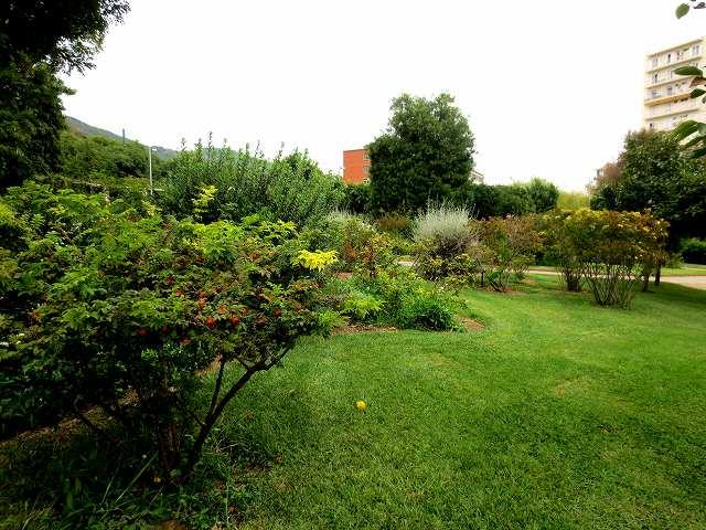 秋のバラ公園_b0064411_05201903.jpg