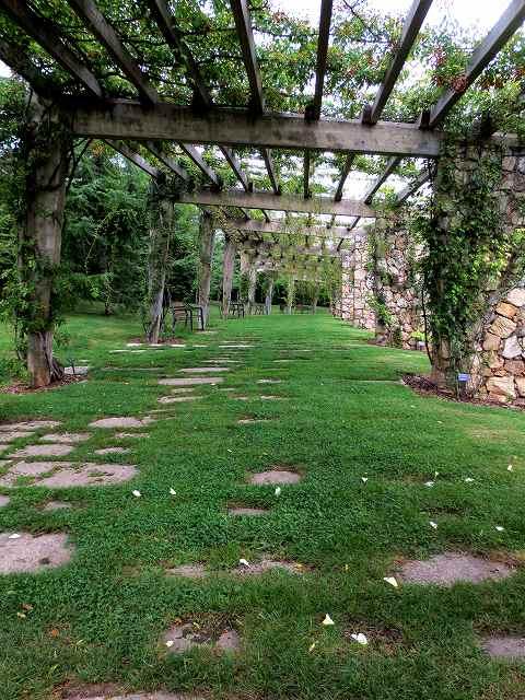 秋のバラ公園_b0064411_05262288.jpg