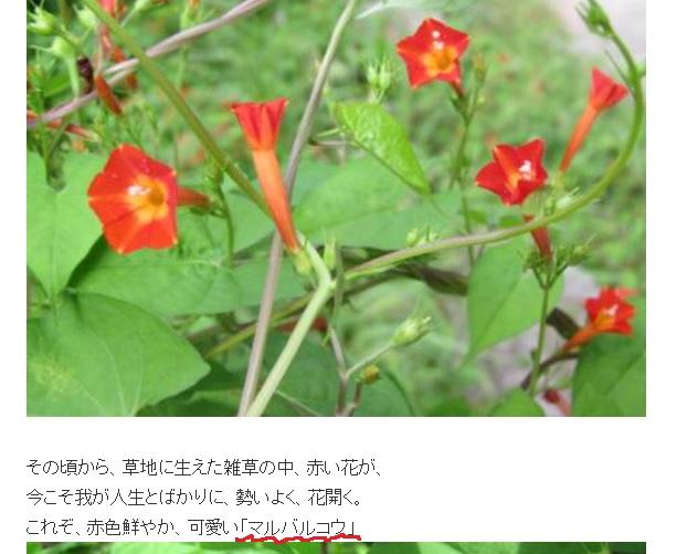 b0186959_10445480.jpg