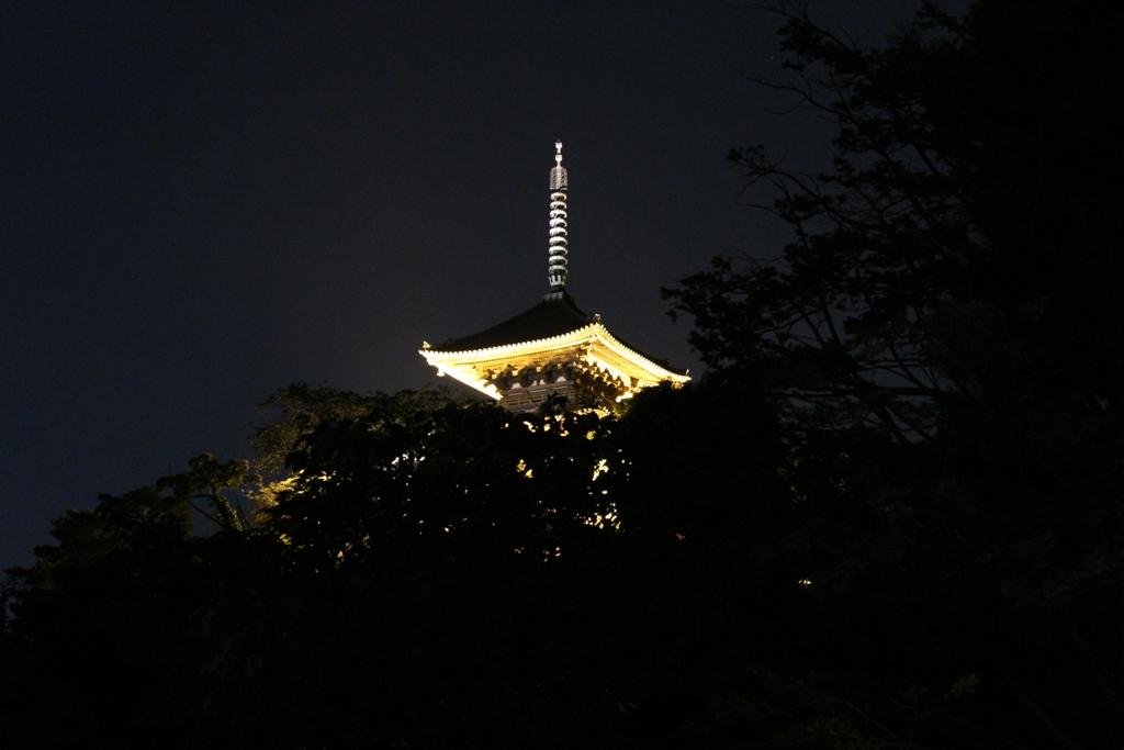 三渓園観月会_c0310571_23143987.jpg