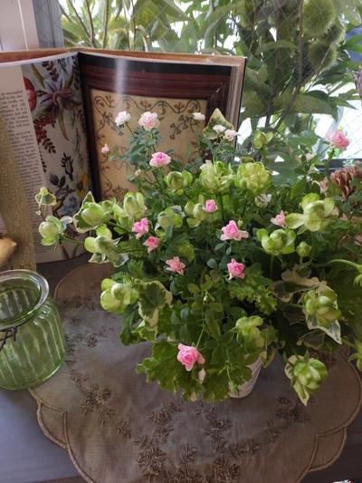 オークリーフ(黄緑色の花)_f0049672_185955.jpg