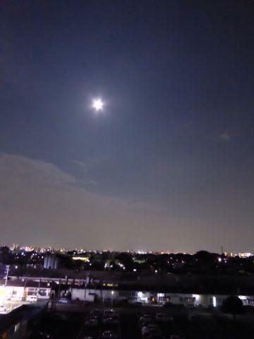 沖縄との連帯の夕べなど リンク色々______カメラがヘン?_a0050728_0342448.jpg