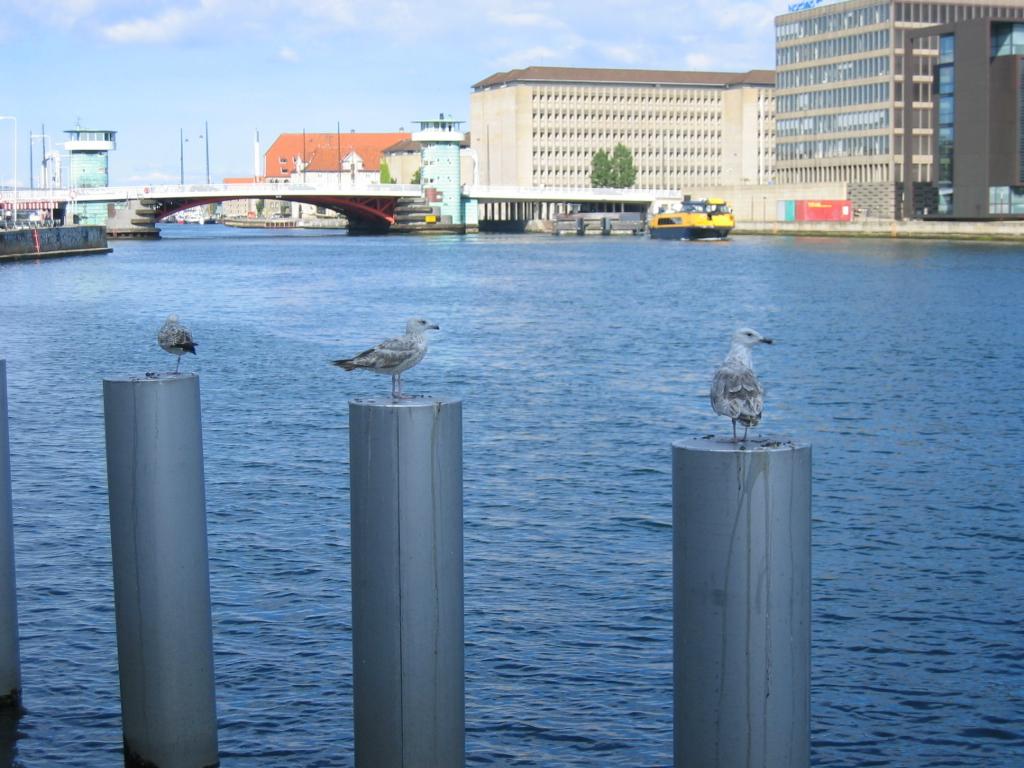 デンマークの旅_e0097130_14180190.jpg