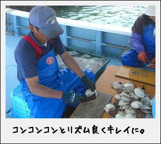またまた漁船にのってみたのだ。_c0259934_11591187.jpg
