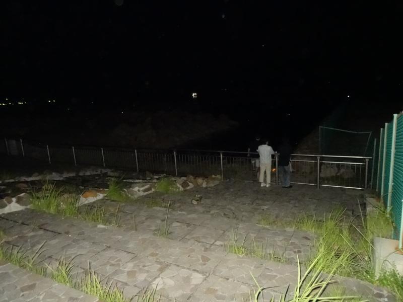 大阪府立大学『カニ調査』第12日   in  せんなん里海公園     by     (TATE-misaki)_c0108460_09450856.jpg