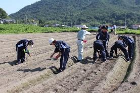 安中1年生が奮闘!~まちづくり農業体験~ _e0175370_856438.jpg