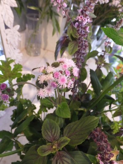 オークリーフ花の教室(森田さんの作品)_f0049672_18195639.jpg