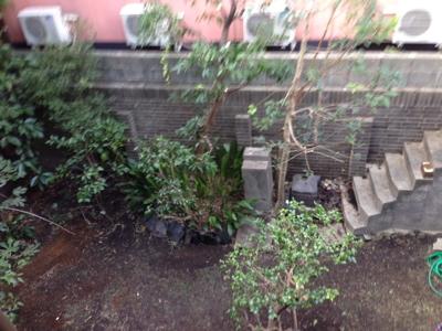 庭からゲット♪_f0232994_0504851.jpg