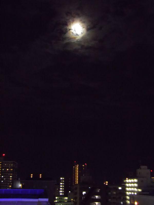 札幌の豪雨に驚くも、こちらでも豪雨が_c0025115_23265901.jpg