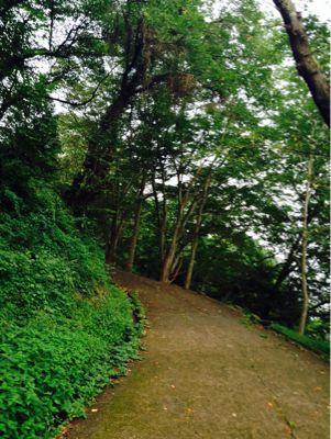 柴田、城址公園_e0232918_637656.jpg
