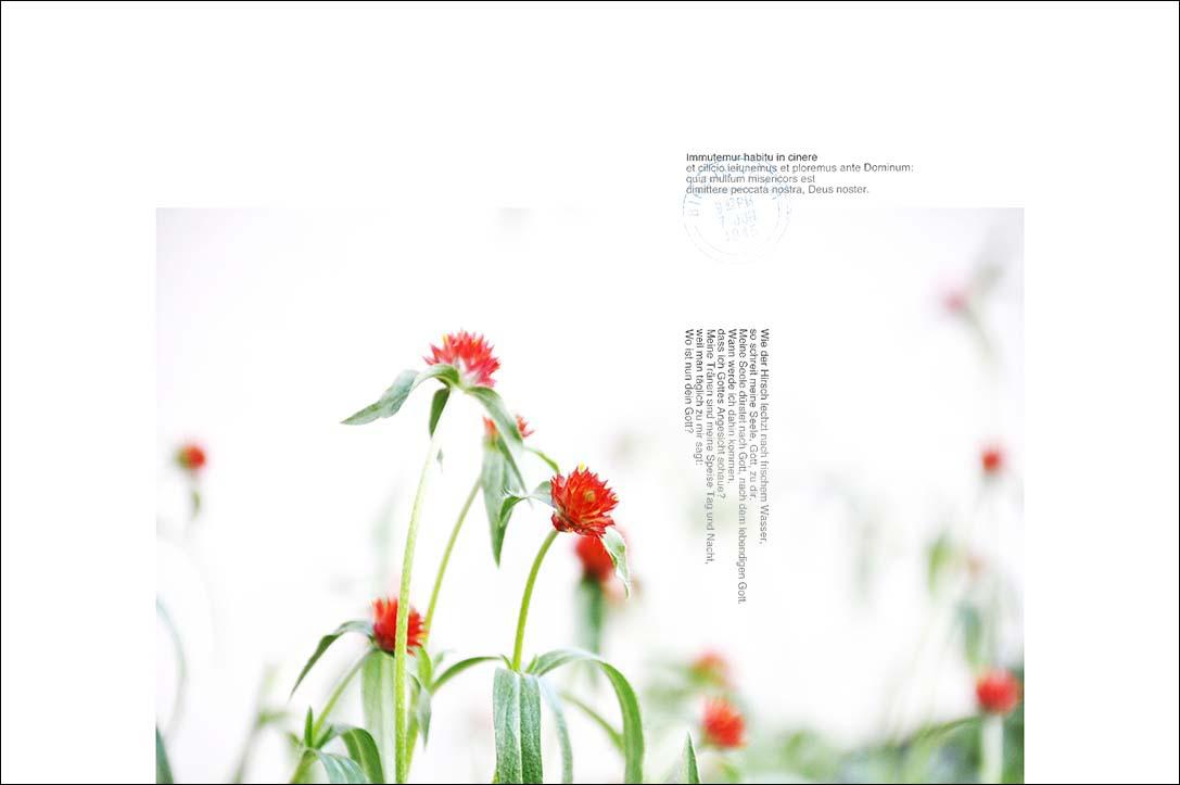 f0198771_00925.jpg