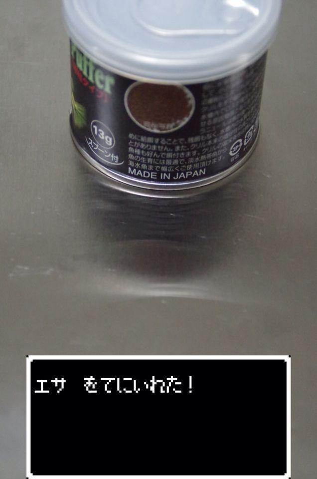 b0304573_11232519.jpg