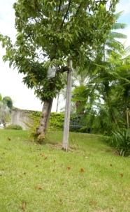 f0203094_9381794.jpg