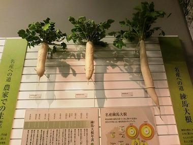 練馬大根③(江戸野菜 江戸の食文化)_c0187004_9124459.jpg