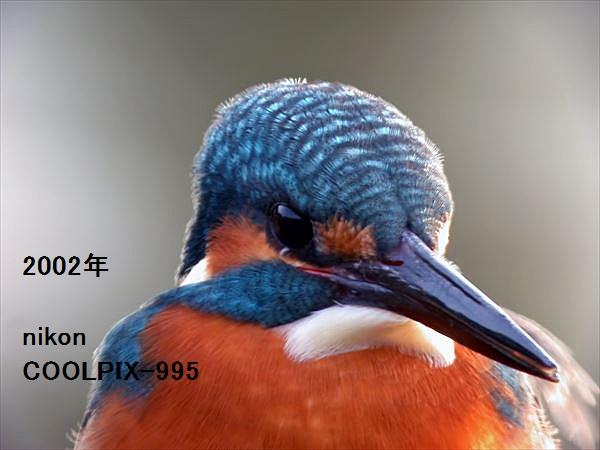 a0104116_1862265.jpg