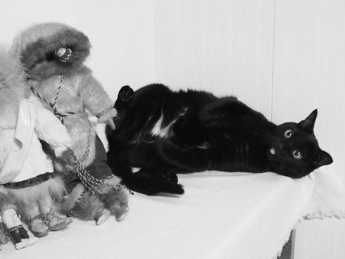 20141024 #blackcat #黒猫_d0176130_20562780.jpg
