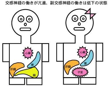 肩の痛み、左と右で原因が違う?〜ある日の施術より〜_e0073240_854395.jpg
