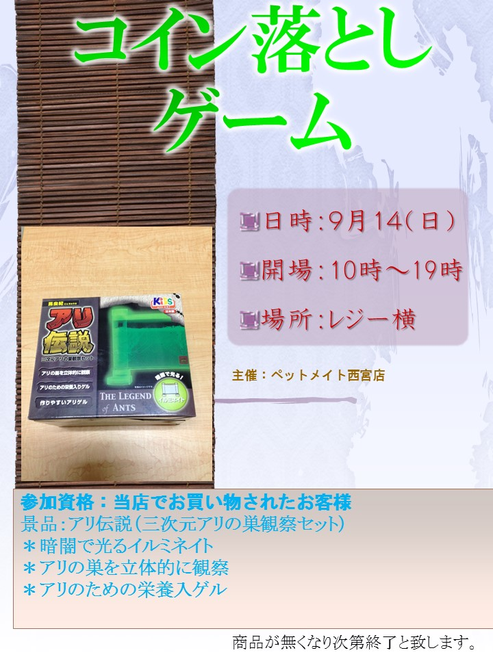 140906 イベント告知_e0181866_947497.jpg