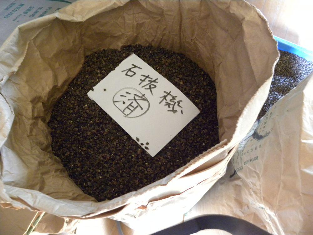 信州信濃の新蕎麦よりも・・・_b0329588_08452886.jpg
