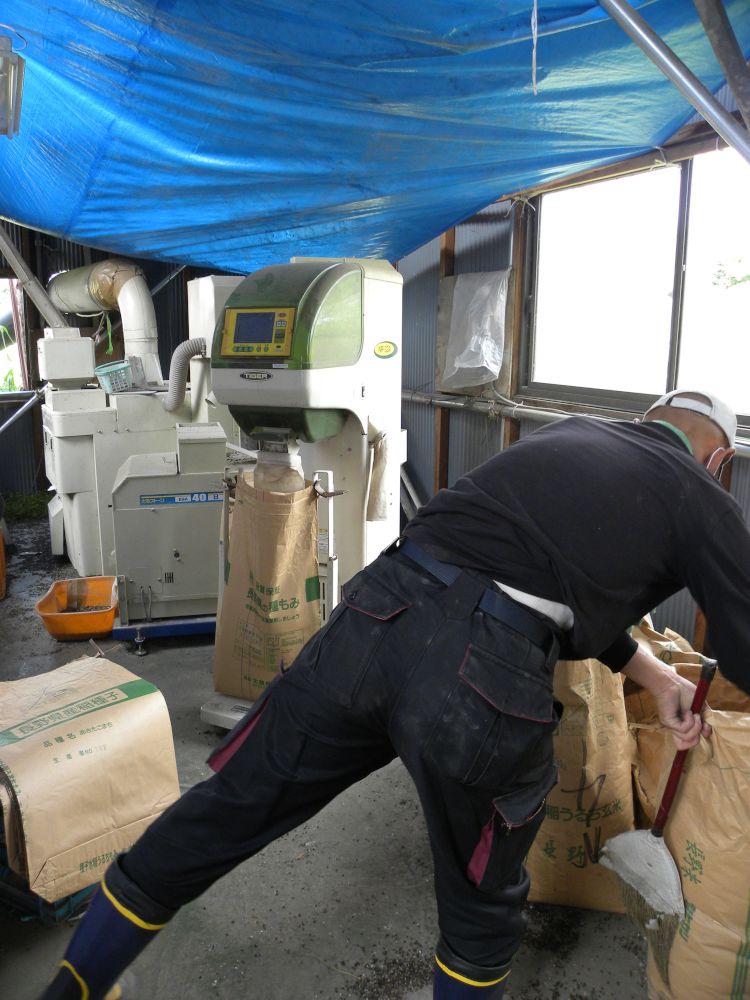 信州信濃の新蕎麦よりも・・・_b0329588_08492005.jpg