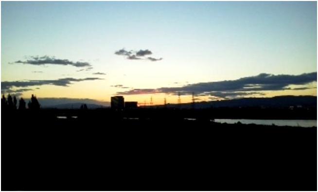 散歩道・淀川の堤防からの景色_b0104092_2242165.jpg