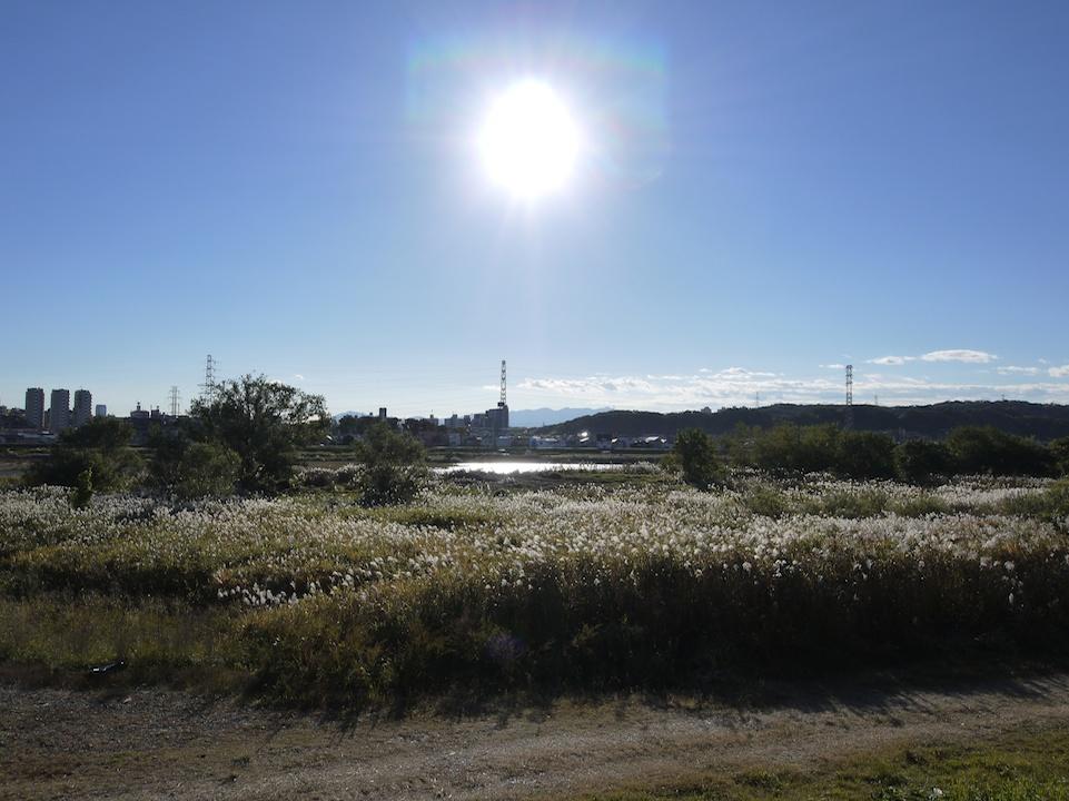 太陽と河川敷 2_e0216133_028578.jpg