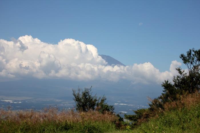 2014.9.14 まだですね・矢倉岳・多分オオタカ、ツミ、サシバ、ノスリ_c0269342_19241918.jpg