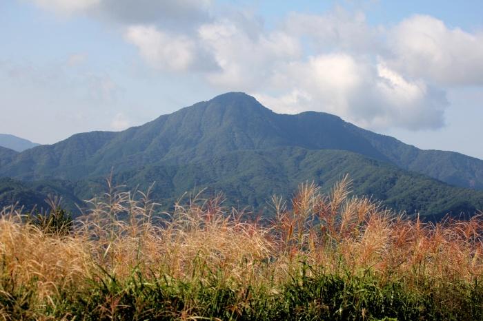 2014.9.14 まだですね・矢倉岳・多分オオタカ、ツミ、サシバ、ノスリ_c0269342_19262447.jpg